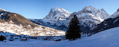 Panoramic View of Grindelwald in Switzerland. Stock Image