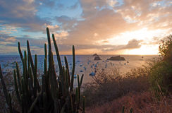 Panoramic view of Gustavia harbour at sunset seen from Fort Karl hill, St Barth, sailboats, cactus Royalty Free Stock Images