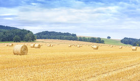 Panoramic view of harvested field with hay bales Stock Images