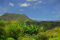 Panoramic view in Hawaii royalty free stock photography