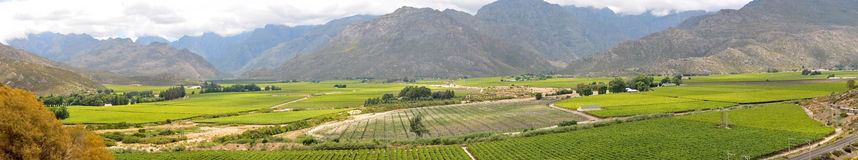 Panoramic view of the Hex River Valley Stock Photography