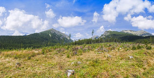 Panoramic view of High Tatras Mountains in Slovakia Stock Photo