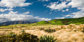 Panoramic view of hills at catlins. New zealand Royalty Free Stock Photos