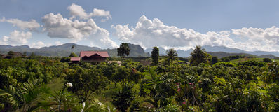 Panoramic view of house, tree, mountain and cloudy sky view of Chiangmai Thailand Stock Photo