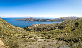 Panoramic view of Isla del Sol on Titicaca Lake - Bolivia Royalty Free Stock Image
