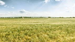Panoramic view in Italy Umbira near Assisi Royalty Free Stock Image