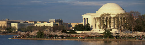 Panoramic view of Jefferson Memorial and Cherry Blossoms in Spring, Washington D.C. Royalty Free Stock Photos
