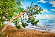 Kama river side. Royalty Free Stock Image