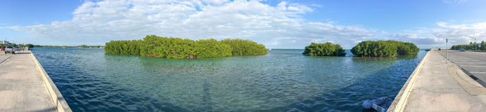 Panoramic view of Key West coastline and mangroves, USA.  royalty free stock photo