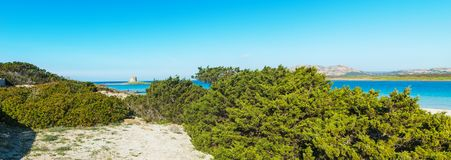 Panoramic view of La Pelosa tower. On a clear day Stock Image