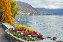 Panoramic view of Lake Geneva and Alps, Montereux, canton of Vaud Stock Photography