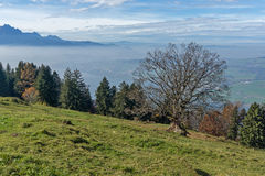 Panoramic view of Lake Lucerne, Switzerland Stock Image