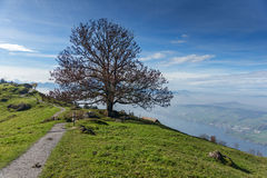Panoramic view of Lake Lucerne, Switzerland Stock Photography