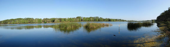 Panoramic view of lake taylor. A 5 photo panoramic view of the whole Lake Taylor in Largo, Florida stock photos