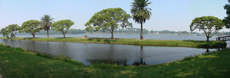 Panoramic view of lake taylor. A pretty panoramic view of trees and shoreline of Lake Taylor, Florida stock photos