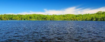 Little Horsehead Lake Panorama Wisconsin. Panoramic view of Little Horsehead Lake on a summer day in northwoods Wisconsin royalty free stock images
