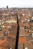 Panoramic view of Lucca. Italy Stock Photography