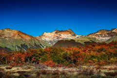 Panoramic view of magical colorful fairytale forest at Tierra del Fuego National Park, Patagonia, Argentina, Autumn time, blue sky. Panoramic view of magical royalty free stock images