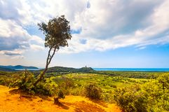 Panoramic view of Maremma Regional or Uccellina Park. Tuscany, I. Panoramic view of Maremma Regional Park also known as Uccellina Park. Tree, forest and sea Royalty Free Stock Photo