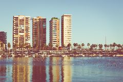 Panoramic view at the Marina place in Malaga. Malaga is the second-most populous city of Andalusia and the sixth-largest in Spain. stock photo