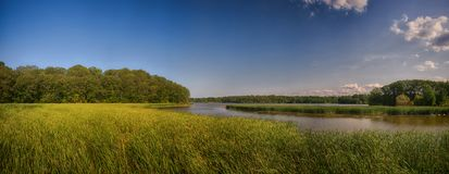 Panoramic view of marshland landscape in Ontario`s Royal Botanic. Al Garden aka RBG during summer time stock image