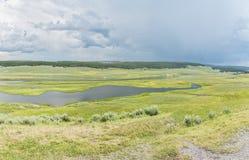 Panoramic view of marshland Stock Image