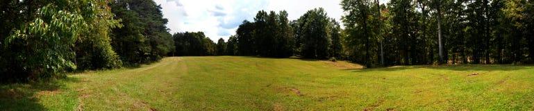 Meadow panorama stock photo