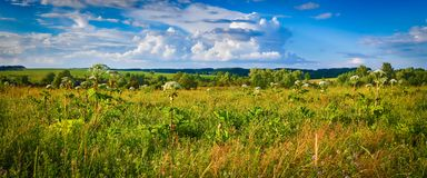 Rural landscape. Heraclium on the foreground. Panorama Royalty Free Stock Photos