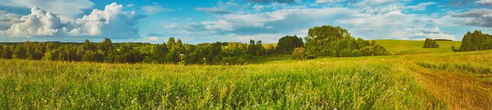 Rural landscape. Panorama Royalty Free Stock Photography