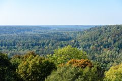 Panoramic view of misty forest. Far horizon Royalty Free Stock Photography