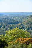 Panoramic view of misty forest. Far horizon Royalty Free Stock Images
