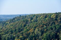 Panoramic view of misty forest. Far horizon Stock Images