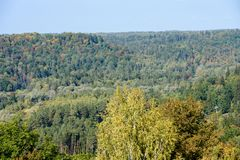 Panoramic view of misty forest. Far horizon Stock Photo