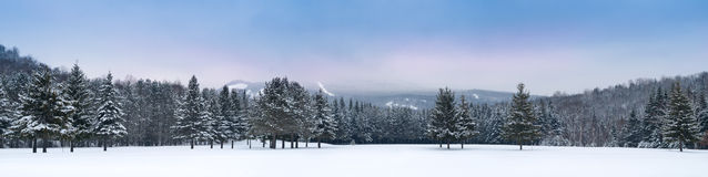 Panoramic view of Mont-Tremblant south. Moutain side Stock Images