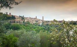 Panoramic view of Montalcino, Tuscany. Italy Royalty Free Stock Photos