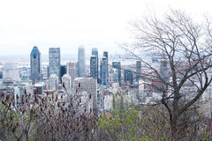 Panoramic view of Montreal Royalty Free Stock Photo