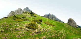 Panoramic view of Mount Ciucas on spring time Stock Images