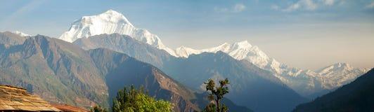 Panoramic view of mount Dhaulagiri. From annapurna range, Nepal himalayas mountains stock photo