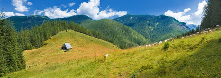 Panoramic view of the mountain clearing and highland hut Royalty Free Stock Photography