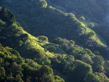 Panoramic view of mountain Stock Image