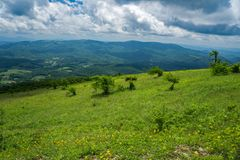 Panoramic View from Whitetop Mountain, Grayson County, Virginia, USA. Panoramic view from a Mountain Meadow with Mountains in the background from the Top of Royalty Free Stock Photography