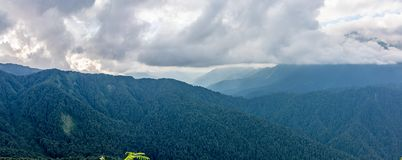 Panoramic view of a mountain range covered with forest in thick clouds royalty free stock photos