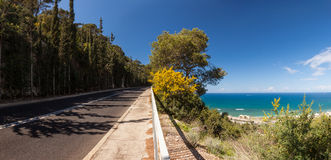 Panoramic view of mountain road with trees, cloudy sky and Medditerian sea on the background royalty free stock images