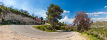 Panoramic view of mountain road with trees, cloudy sky and Medditerian sea on the background. Carmel Forest, Israel royalty free stock photography