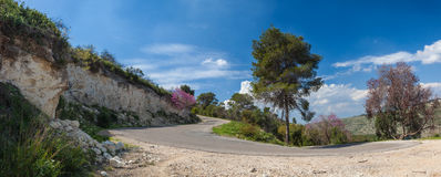 Panoramic view of mountain road with trees, cloudy sky and Medditerian sea on the background. Carmel Forest, Israel stock image