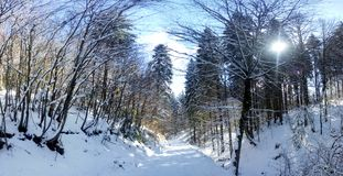 Panoramic view of a mountain roud Stock Photography