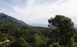 Panoramic view of mountains and forest path at Montserrat mounta Stock Photo