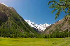 Panoramic view of the mountains of the Gran Paradiso Park, Italy. Panoramic views of the mountains and the valley in the park of Gran Paradiso, Italy Stock Images