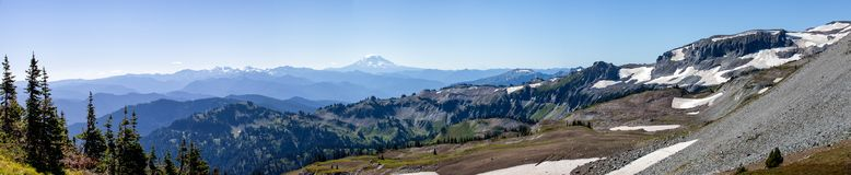 View of Mt. Rainier while hiking Summerland to Panhandle Gap. Panoramic view of Mt. Rainier while hiking Summerland to Panhandle Gap royalty free stock photography