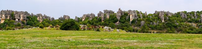 Panoramic view of Shilin limestone pinnacles Stone Forest - Yunnan, China. Panoramic view of Naigu Shilin limestone pinnacles Stone forest, Yunnan Province royalty free stock photography